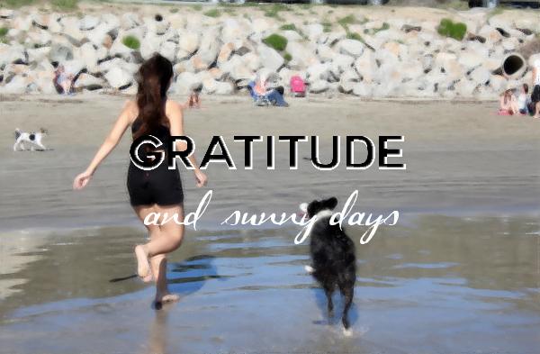 Gratitude in Avila Beach