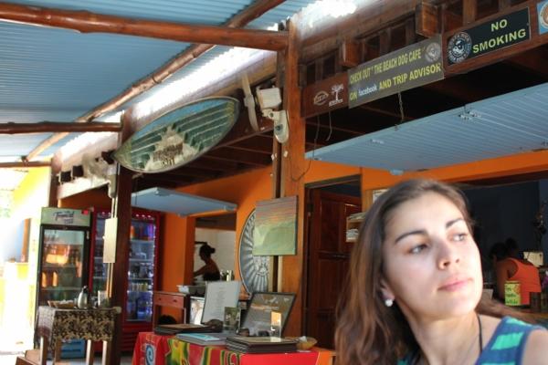 Beach dog cafe, Nosara, Guanacaste