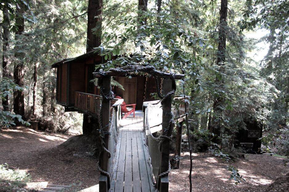 Redwood tree house eco friendly vacation getaway