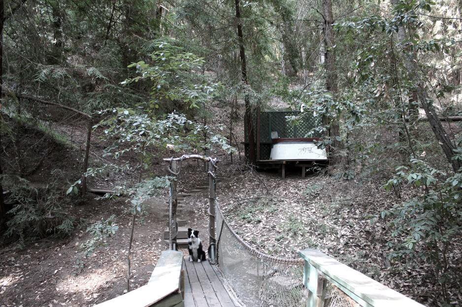 redwood treehouse weekend luxury getaway eco friendly vacation rental