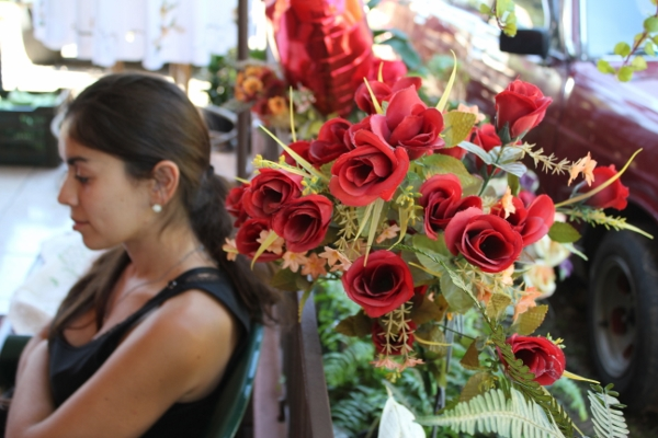 Valentine's Day wedding in Costa Rica