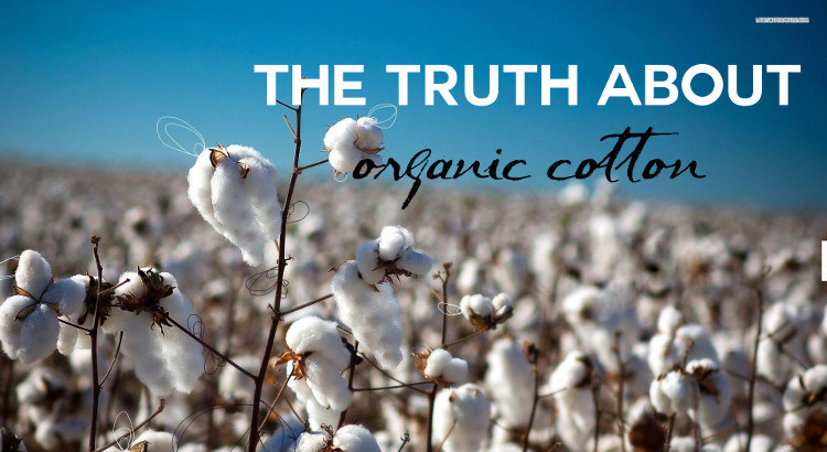 The truth about organic cotton | Fashionhedge
