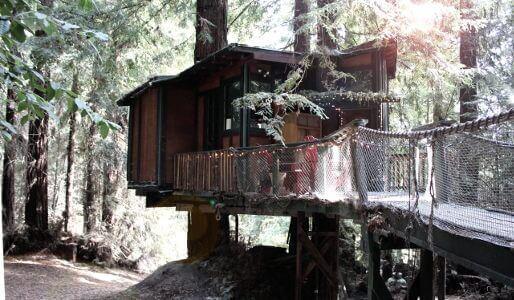 Redwoods eco luxury getaway